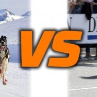 6 perros y su musher Javier Alemanno contra la patinadora Leire Larrasoain